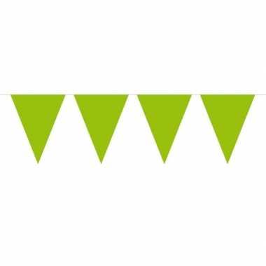1x mini vlaggetjeslijn slingers lime groen 300 cm
