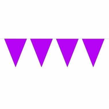 1x mini vlaggetjeslijn slingers paars 300 cm