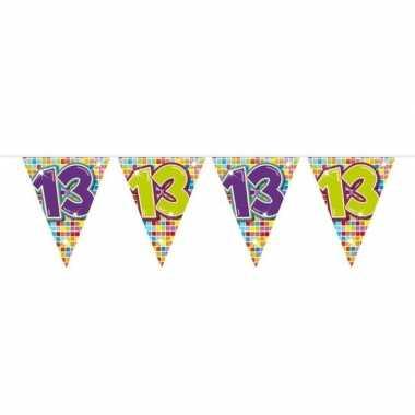 1x mini vlaggetjeslijn slingers verjaardag versiering 13 jaar