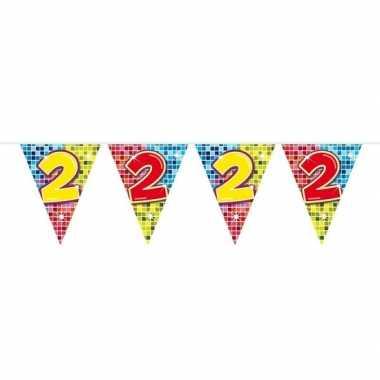 1x mini vlaggetjeslijn slingers verjaardag versiering 2 jaar