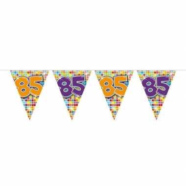 1x mini vlaggetjeslijn slingers verjaardag versiering 85 jaar