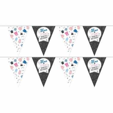 2x gender reveal party/feestje versiering vlaggenlijnen 10 meter