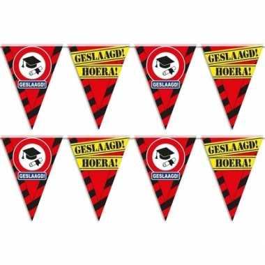 2x geslaagd/afgestudeerd puntvlaggenlijn/slinger waarschuwingsbord 10