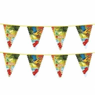2x hawaii thema vlaggenlijn met grote vlaggetjes