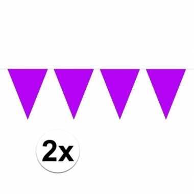 2x mini vlaggetjeslijn slingers paars 300 cm