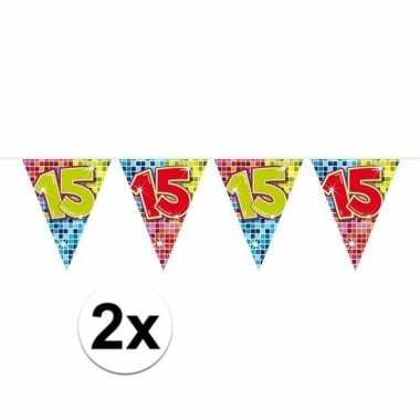 2x mini vlaggetjeslijn slingers verjaardag versiering 15 jaar