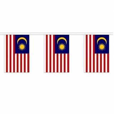 2x polyester vlaggenlijn van maleisi? 3 meter