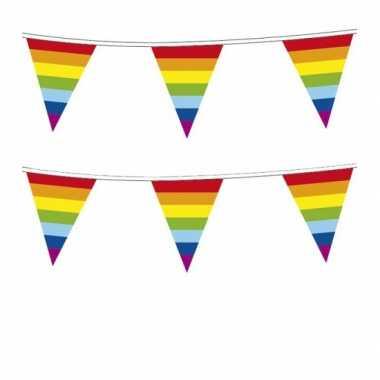 2x stuks plastic regenboog vlaggenlijn 10 meter