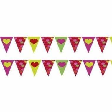 2x stuks valentijn vlaggenlijnen slingers 4 meter per stuk