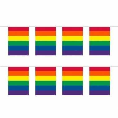 2x stuks vierkante regenboog vlaggenlijnen van 10 meter