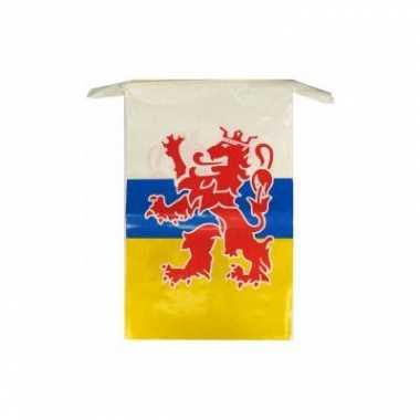 2x stuks vlaggenlijnen wapen van limburg 10 meter