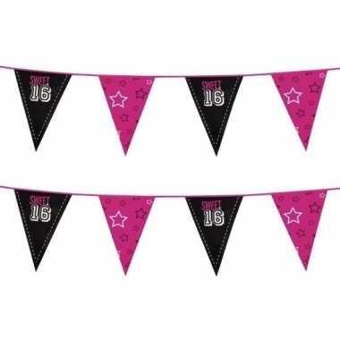 2x sweet 16 meiden vlaggenlijn