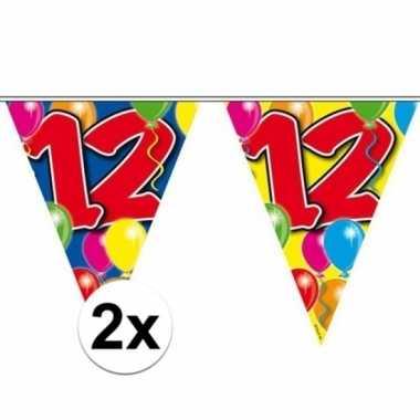 2x vlaggenlijn 12 jaar 10 meter