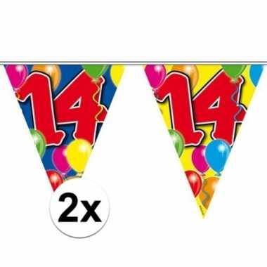 2x vlaggenlijn 14 jaar 10 meter