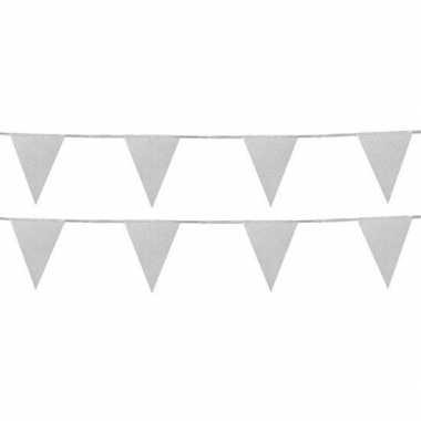 2x zilveren vlaggenlijnen met glitters 6 meter