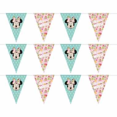 3x disney minnie mouse tropical vlaggenlijnen kinderverjaardag