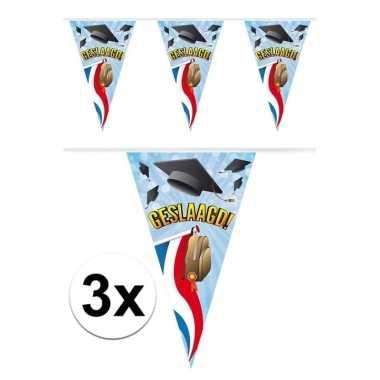 3x geslaagd vlaggetjes 10 meter