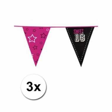 3x sweet 16 meiden vlaggenlijn