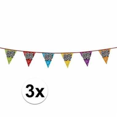 3x vlaggenlijn 85 jaar feestje