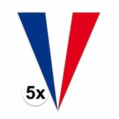 5x franse vlaggenlijnen 5 meter