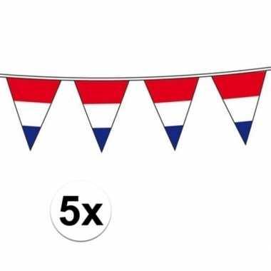 5x holland vlaggenlijnen van 10 meter