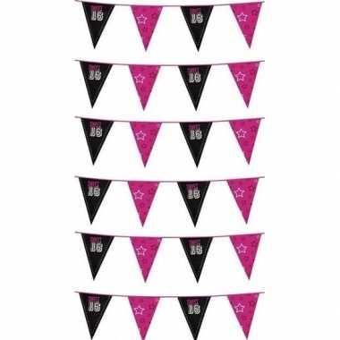 6x sweet 16 meiden vlaggenlijn