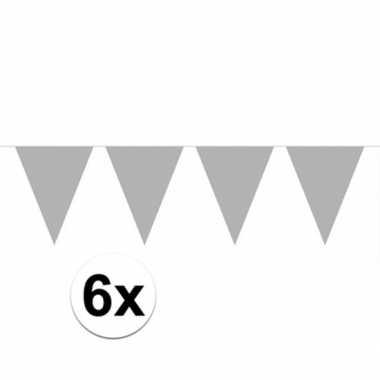 6x vlaggenlijnen zilver kleurig 10 m