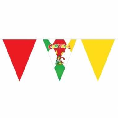 Carnaval versiering vlaggenlijn 10 meter