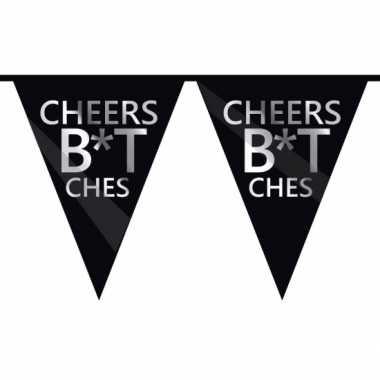 Cheers bitches verjaardagsvlaggenlijn