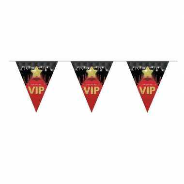 Driehoekige VIP vlaggenlijn 5 m