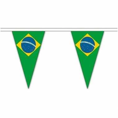 Extra lange brazilie vlaggenlijnen van 5 meter