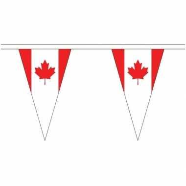 Extra lange canada vlaggenlijnen van 20 meter