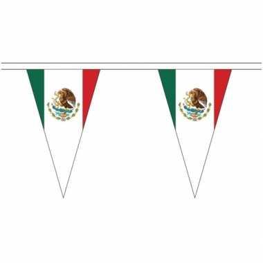 Extra lange mexico vlaggenlijnen van 5 meter