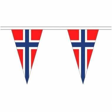 Extra lange noorwegen vlaggenlijnen van 5 meter