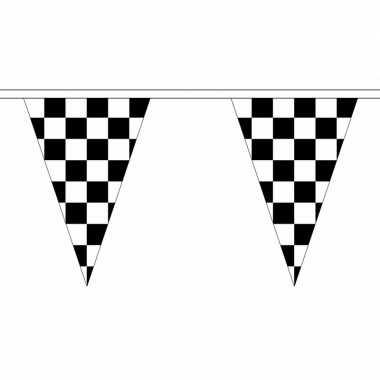 Finish slinger met puntvlaggetjes 25 meter