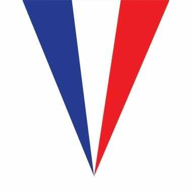 Franse vlaggenlijn 5 meter