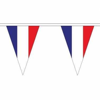 Franse vlaggenlijn van stof 5 m