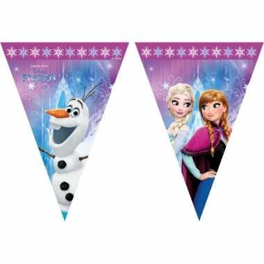 Frozen versiering vlaggenlijn 2 meter