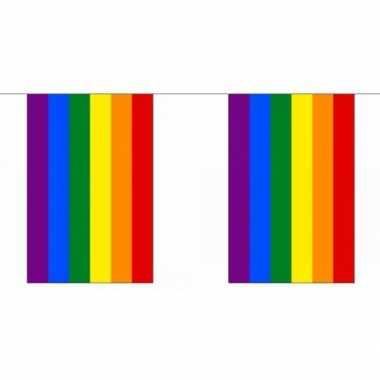 Gay pride regenboog vlaggenlijn 9 m
