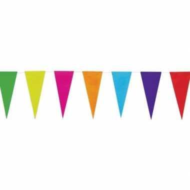 Gekleurde papieren vlaggenlijn 10 mtr