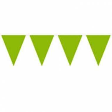 Groene vlaggenlijn 10 meter