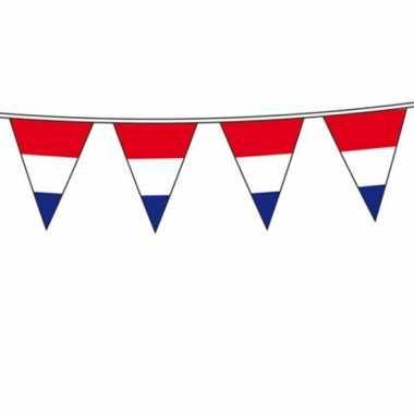 Holland vlaggenlijn 10 meter