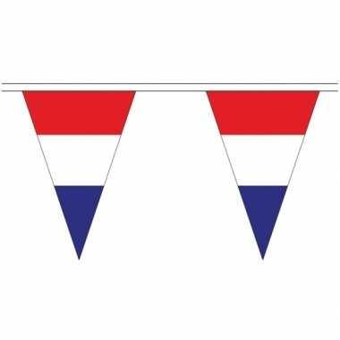 Lange nederland vlaggenlijnen van 5 meter