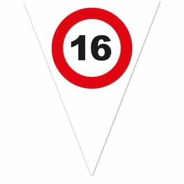 Leeftijd verjaardag vlaggenlijn met 16 jaar stopbord opdruk 5 meter