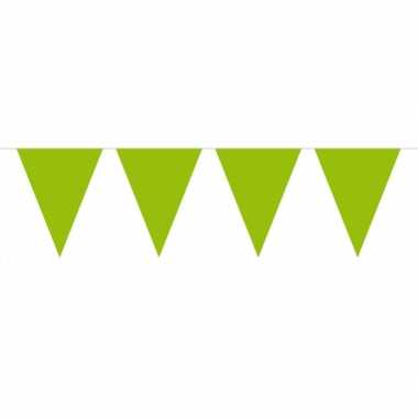 Lime groene vlaggenlijn groot 10 meter