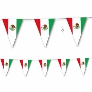 Mexicaanse vlaggenlijn 3,5 meter