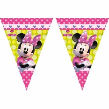 Minnie Mouse vlaggenlijnen 3 meter