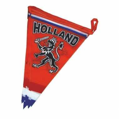 Oranje versiering vlaggenlijn brandvertragend