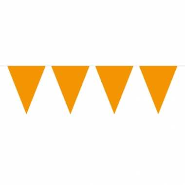 Oranje vlaggenlijn 5 meter