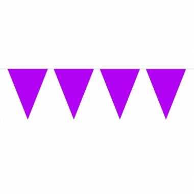 Paarse vlaggenlijn groot 10 meter